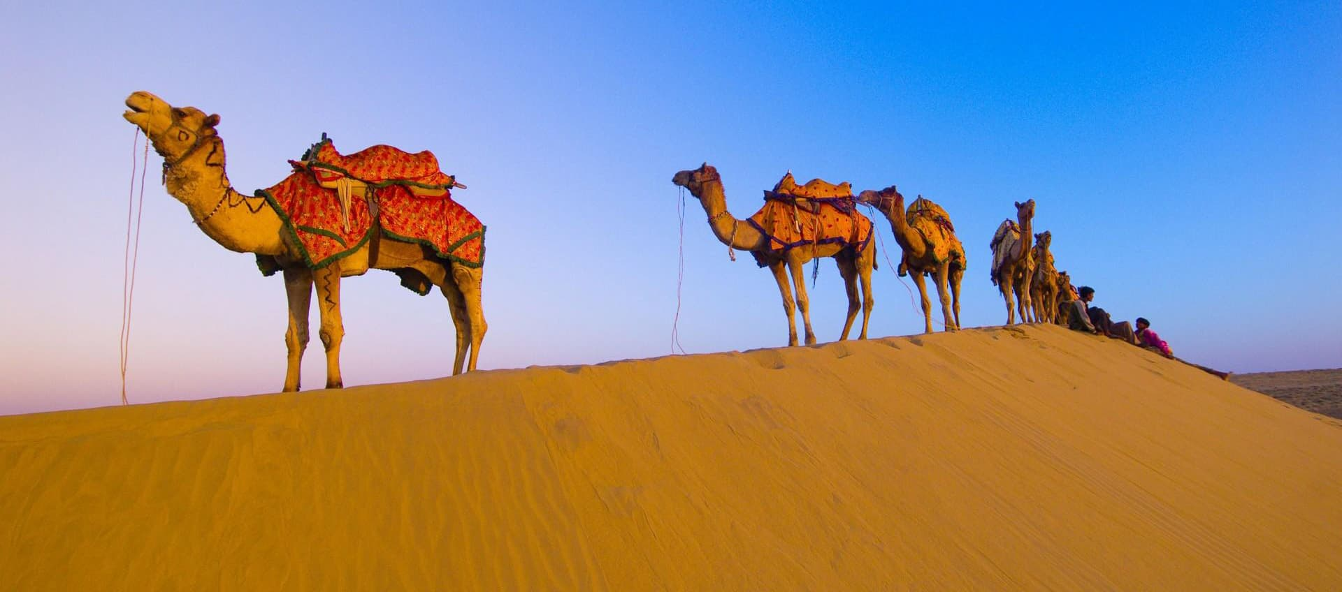 Rajasthan Tour Agency